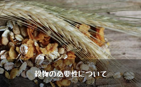 穀物の必要性
