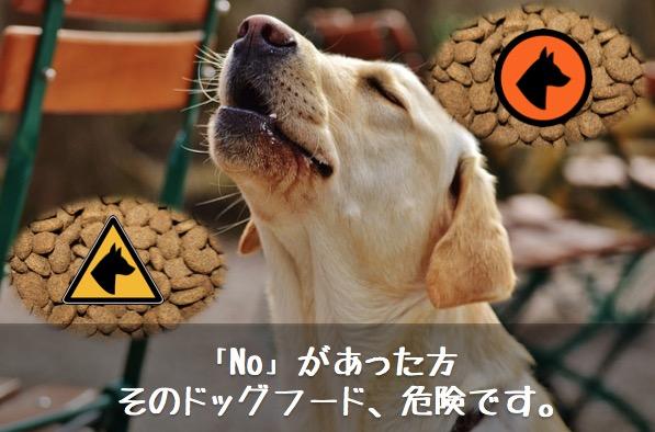 ドッグフード危険